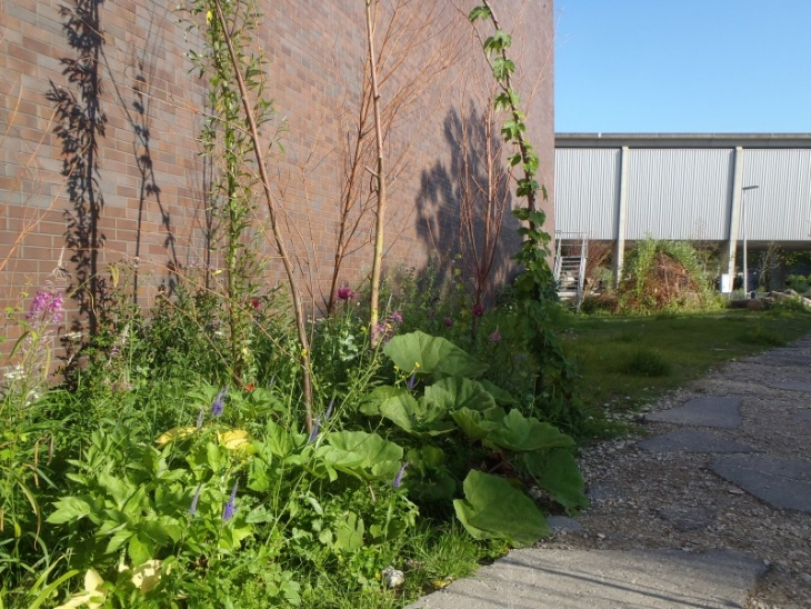 De Nieuwe Tuin, Stakenbosje