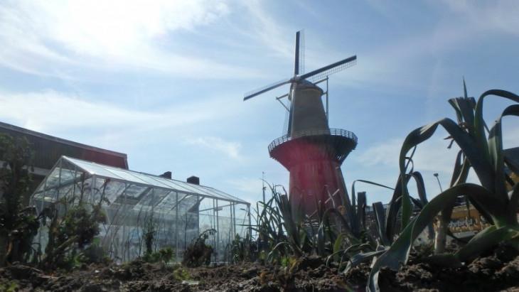 Farm of the World - Schiedam