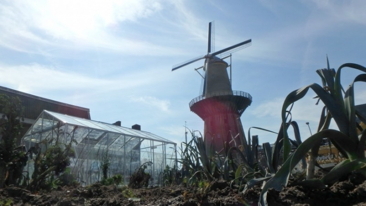 Farm of the World - Schiedam